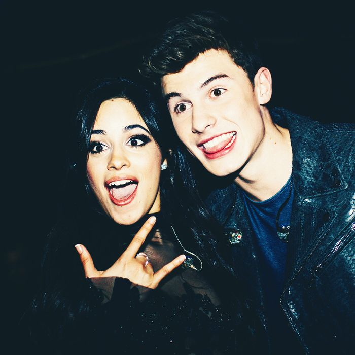 Shawn Mendes and Camila Cabello.