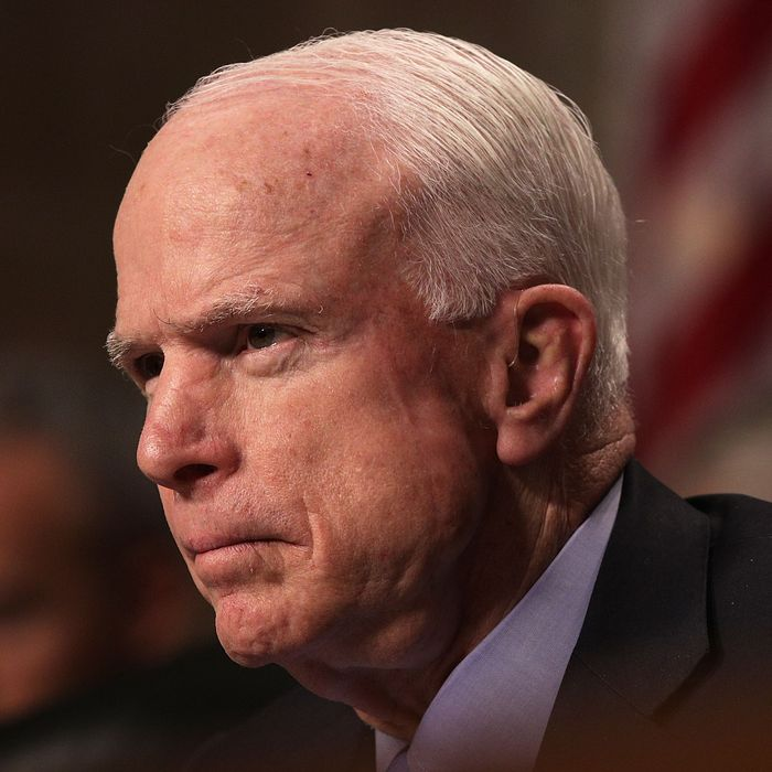 Sidney Mccain: McCain Returns To D.C., Probably To Help Destroy Obamacare