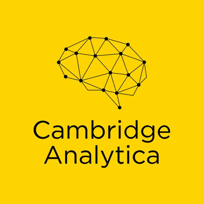 What Is Cambridge Analytica and Who Is Christopher Wylie?