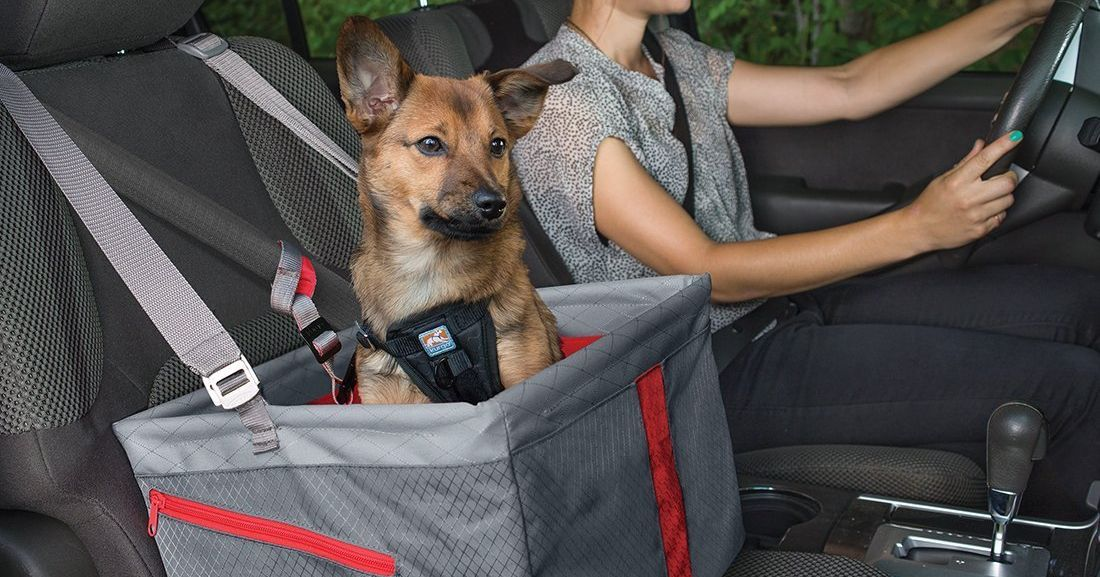 super popular a8e80 35bcb 9 Best Car Seats for Dogs: 2019