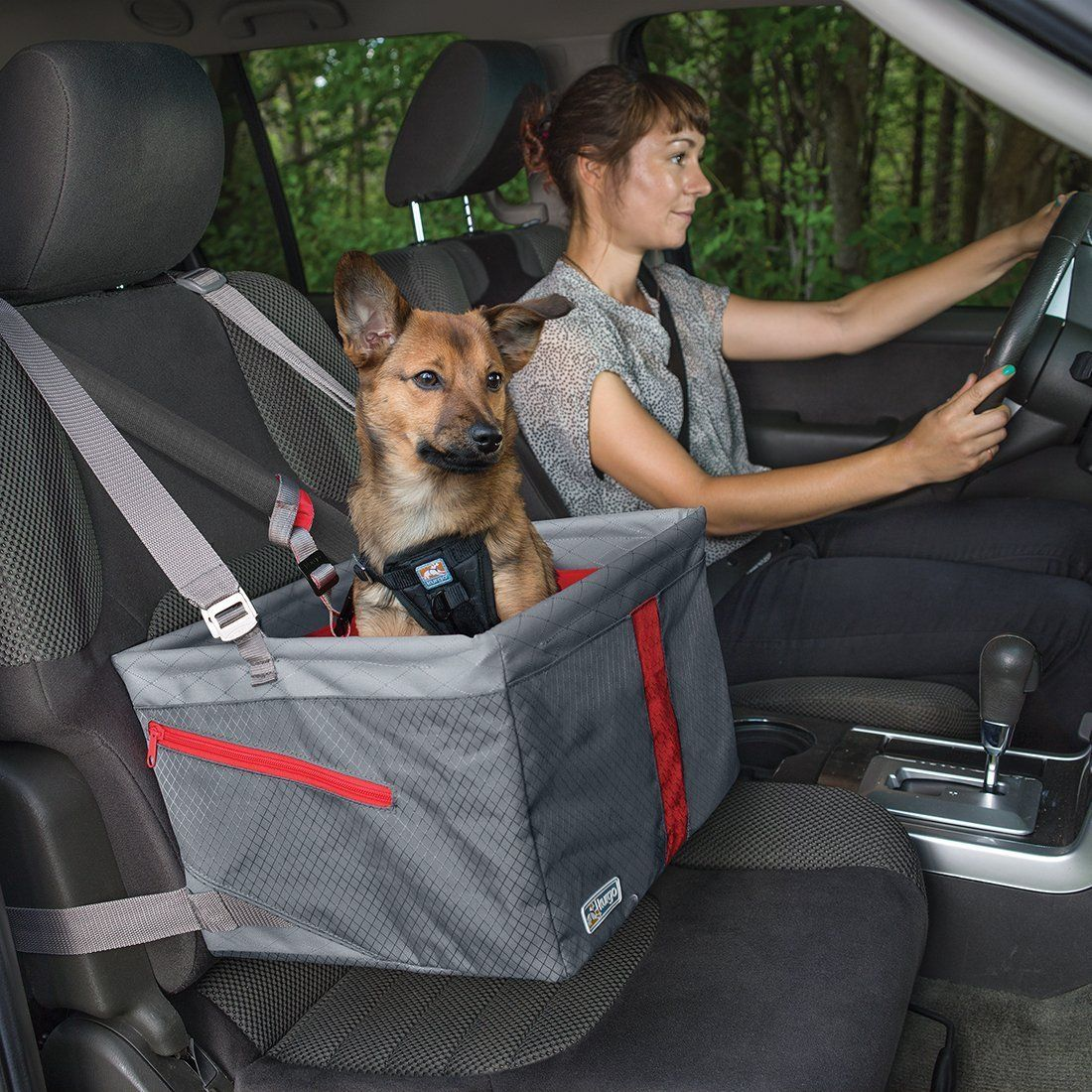 9 Best Car Seats for Dogs: 2019 | The Strategist