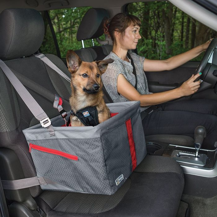 9 Best Car Seats For Dogs 2019 The