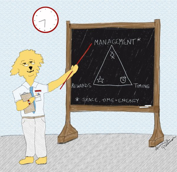 """School for the Dogs Podcast, Episode 16: """"The Dog Training Triad, Part 1: Management"""""""