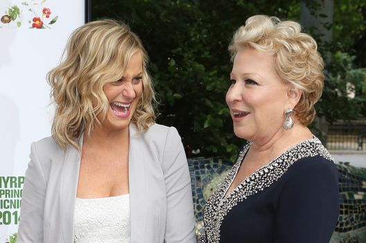 Cynthia Nixon, Amy Poehler and Bette Midler  attend the NYRP 13th annual spring gala at General Grant National Memorial on May 29, 2014 in New York City.