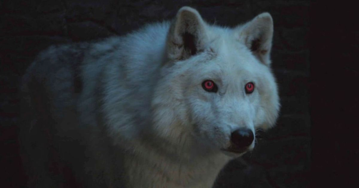 Game of Thrones Wolf Names
