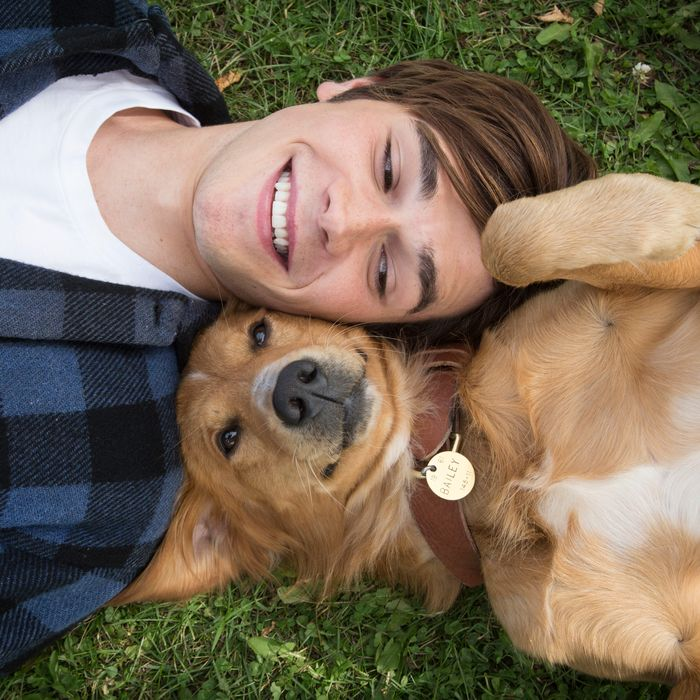 A Dog's Purpose Is Sweet Enough to Make You Sick
