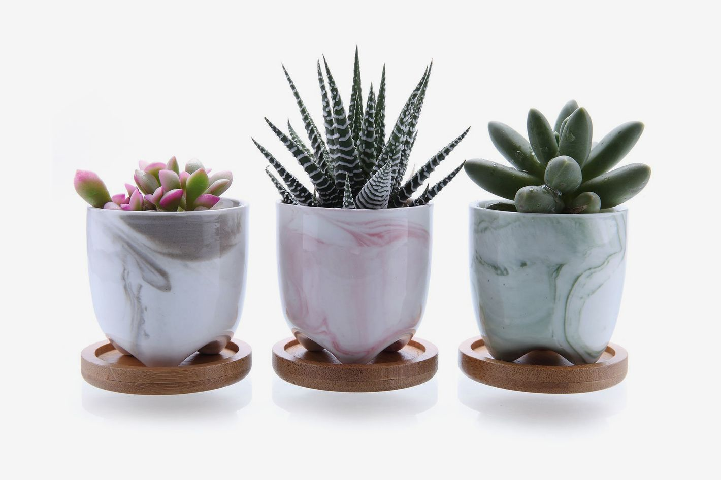 The 27 Best Pots and Planters on Amazon 2018