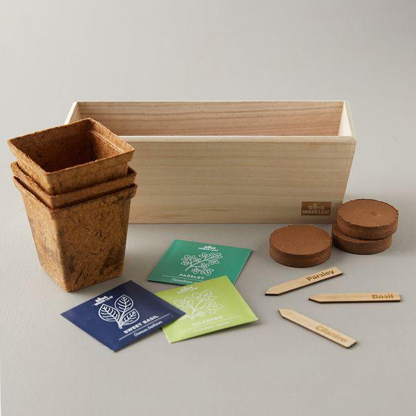 Terrain Windowsill Herb Grow Kit