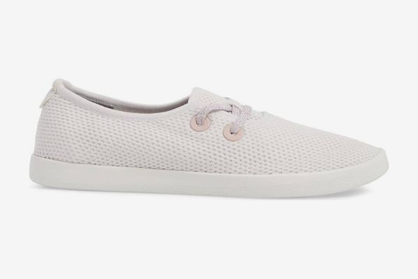Allbirds Tree Skipper in Thistle
