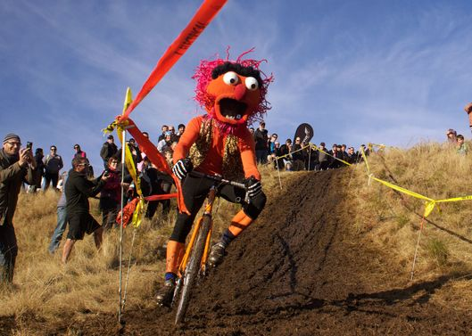 A competitor, dressed as Animal from the Muppets, in action during the New Zealand Cyclocross Championships sponsored by AJ Hackett Bungy, held at Jardine Park,  Queenstown, as part of the Queenstown WInter Festival. The men's event was won by Dan Warren from Hastings while Anja McDonald from Dunedin won the women's event. Queenstown, New Zealand, 2nd July 2011