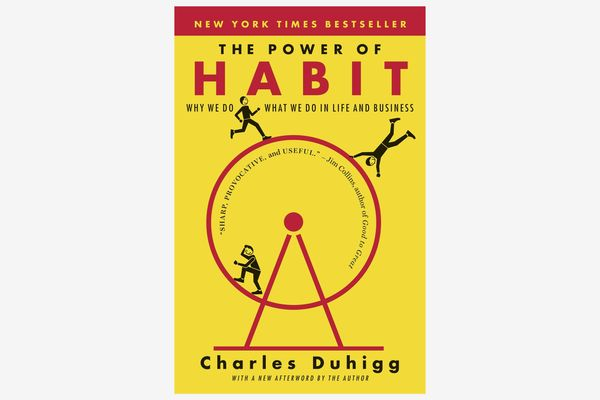 The Power of Habit: Why We Do What We Do in Life and Business, by Charles Duhigg