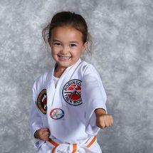 Virtual Taekwondo Beginner Classes