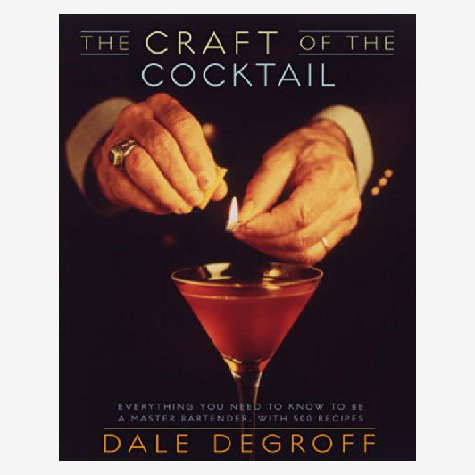 'The Craft of the Cocktail: Everything You Need to Know to Be a Master Bartender,' by Dale DeGroff