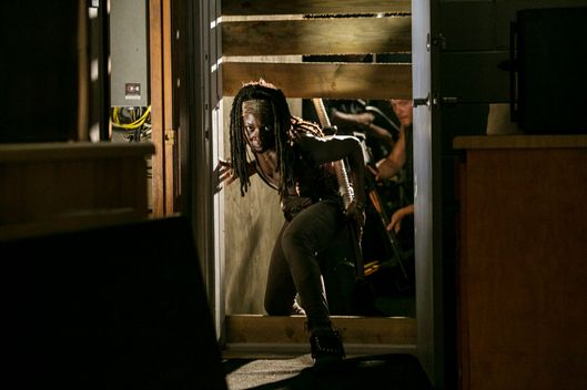 Michonne (Danai Gurira) - The Walking Dead - Season 3, Episode 8
