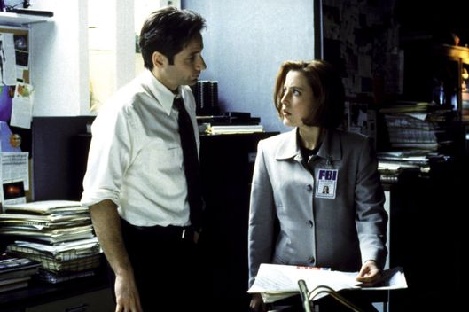THE X-FILES, David Duchovny, Gillian Anderson, 1993-2002. TM and Copyright (c) 20th Century Fox Film Corp. All rights reserved. Courtesy: Everett Collection