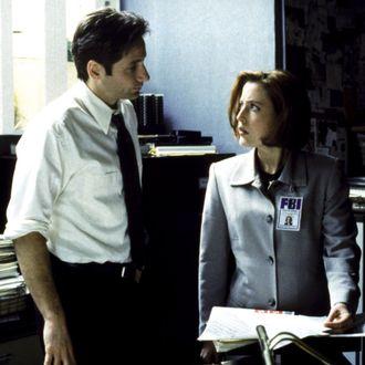 THE X-FILES, David Duchovny, Gillian Anderson, 1993-2002. TM and Copyright (c) 20th Century Fox Film