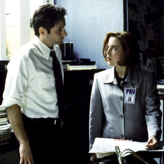 THE X-FILES, David Duchovny, Gillian Anderson, 1993-2002. TM and Copyright (c) 20th Century Fox Film