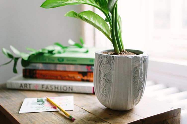 Chen Chen & Kai Williams White Napa-Cabbage Planter