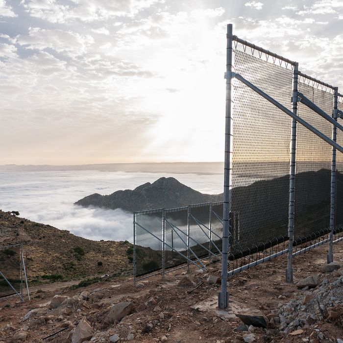 Fog-collecting CloudFisher nets on MountBoutmezguida, Morocco.
