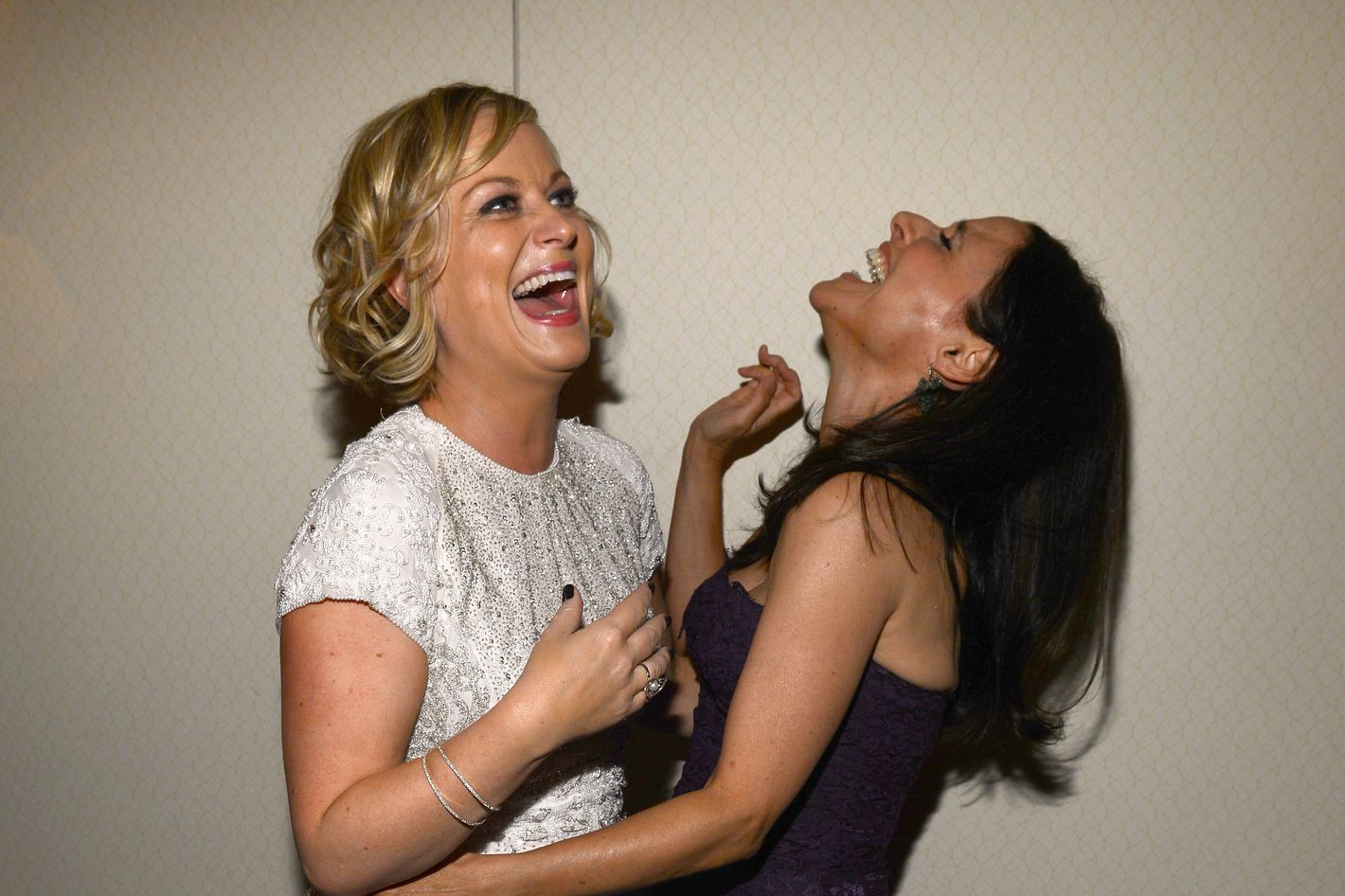 WASHINGTON, DC - APRIL 27:  Amy Poehler and Julia Louis-Dreyfus attend the TIME/CNN/PEOPLE/FORTUNE Pre-Dinner Cocktail Reception at Washington Hilton on April 27, 2013 in Washington, DC.  (Photo by Larry Busacca/Getty Images for Time, Inc)
