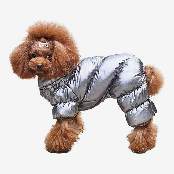 Baxter's Pet Shop Winter Overall Jacket for Small Dogs