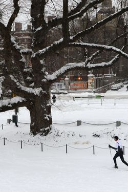 A man cross country skis through Central Park after a snowstorm hit New York January 27, 2015.
