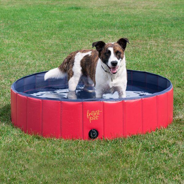 best backyard pools