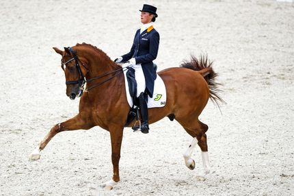 Dutch dressage rider Adelinde Cornelissen performs before winning the Grand Prix Special during the European Dressage Championships in Rotterdam on August 20, 2011.  AFP PHOTO / ANP / ROBIN UTRECHT netherlands out - belgium out (Photo credit should read ROBIN UTRECHT/AFP/Getty Images)