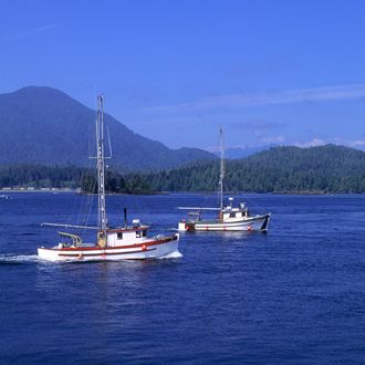 Canada, Bc, Vancouver Island Tofino, Fishing Boats