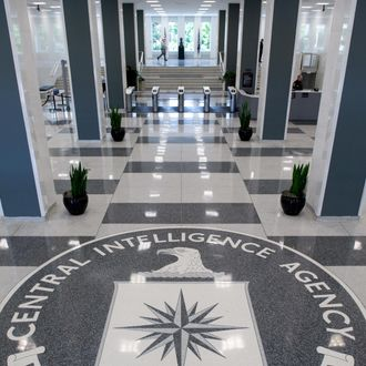 The Central Intelligence Agency (CIA) logo is displayed in the lobby of CIA Headquarters in Langley, Virginia, on August 14, 2008. AFP PHOTO/SAUL LOEB (Photo credit should read SAUL LOEB/AFP/Getty Images)