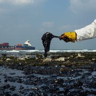 Oil Spill Stains Taiwan Coast After Container Ship Runs Aground
