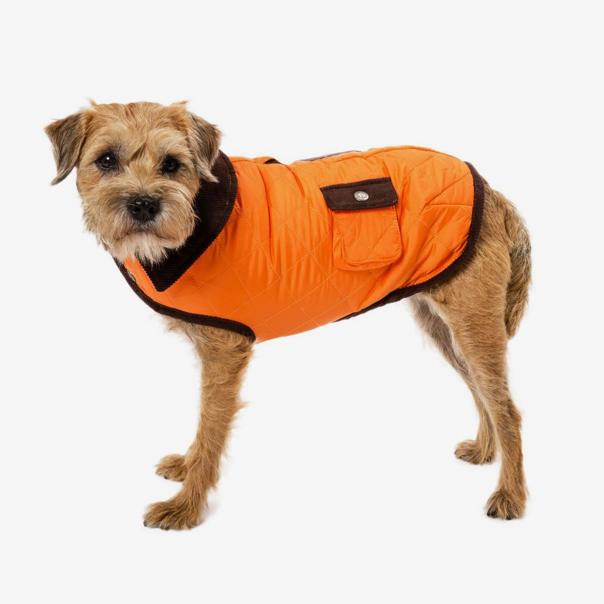 dog shirt gifts for dog lovers pet gift shirts for dogs pet apparel dog stuff pup power clothing for dogs dog clothing dog apparel
