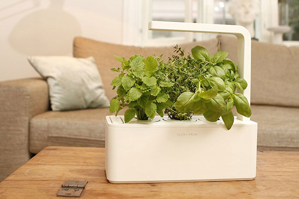 Click & Grow Indoor Smart Fresh Herb Garden Kit With 3 Basil Cartridges
