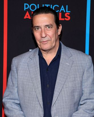 Ciaran Hinds attends USA Network's