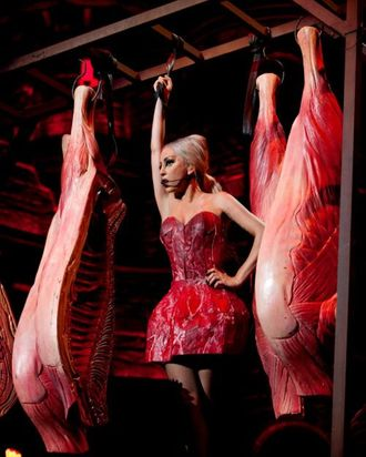 Lady Gaga's new meat dress, not coming to Indonesia.