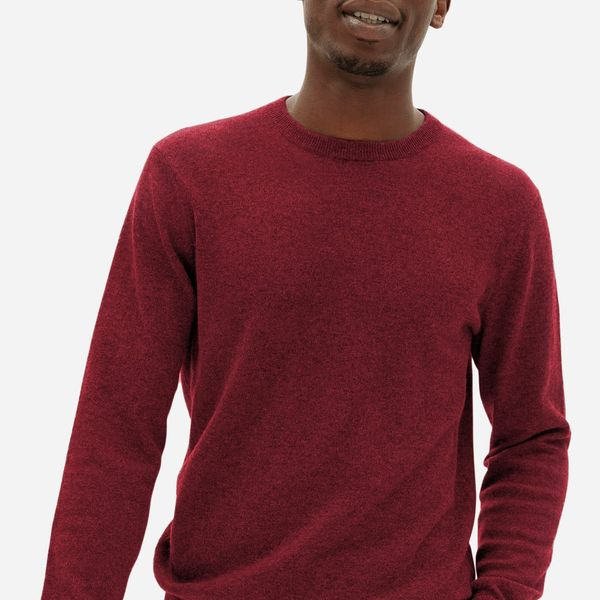 Everlane The Grade-A Cashmere Crew