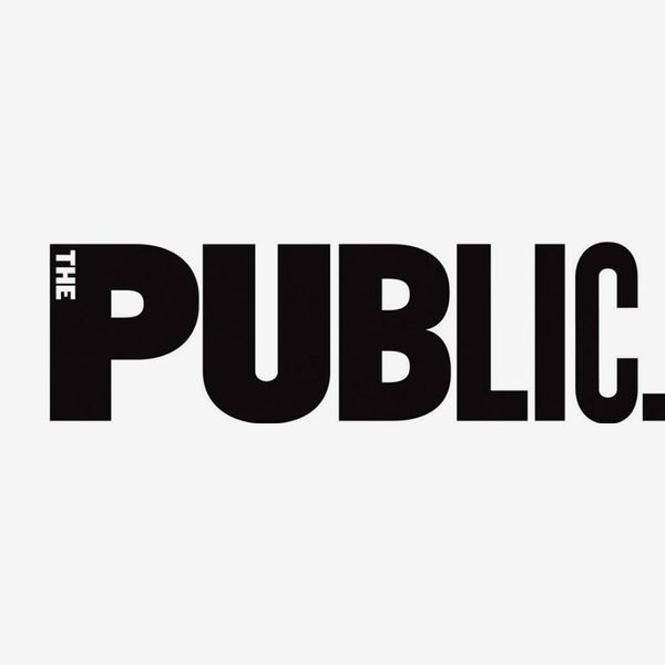 The Public Theater Annual Supporter Membership