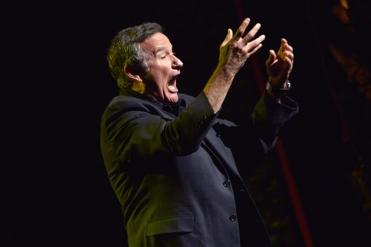 NEW YORK, NY - NOVEMBER 08:  Robin Williams performs during the 6th Annual Stand Up For Heroes at the Beacon Theatre on November 8, 2012 in New York City.  (Photo by Mike Coppola/Getty Images)