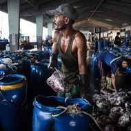 Congress Will Finally Outlaw Seafood Caught by Slaves