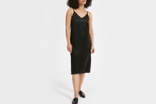 Everlane Party Slip Dress