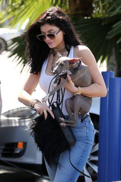 Kylie Jenner holding her dog as she films Keeping up with the Kardashians