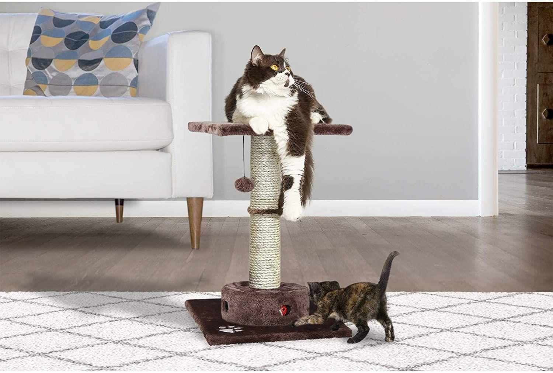 11 Best Cat Trees 2020 The Strategist New York Magazine