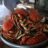 Crab Season Delayed Along Entire West Coast Because of Deadly Toxin