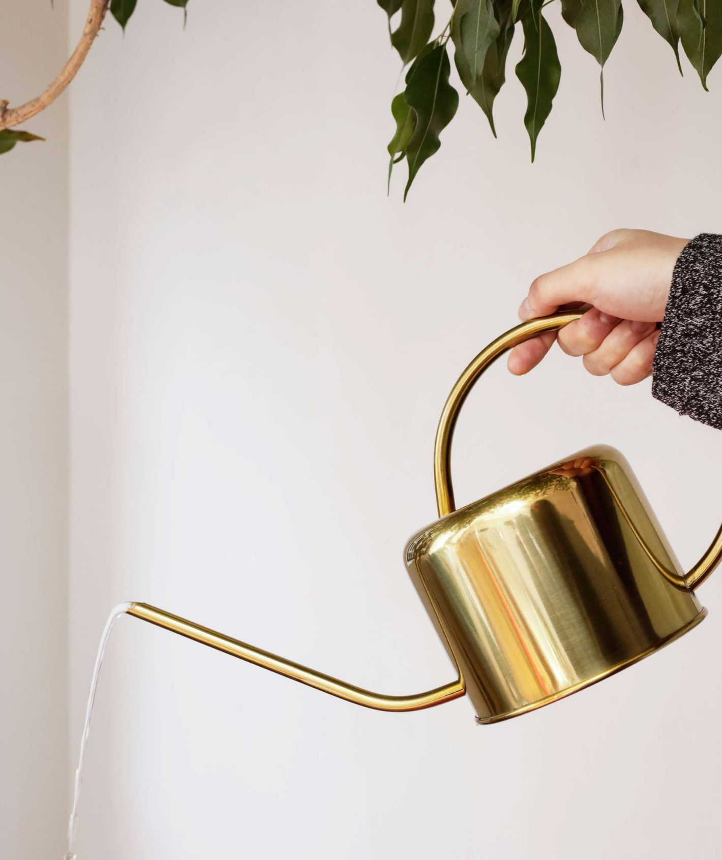 Kikkerland Vintage Stainless Steel Watering Can