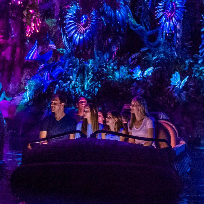 The Inside Story Of Disney World S Avatar Theme Park