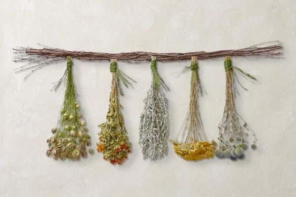 Williams Sonoma Hanging Herbs & Flowers
