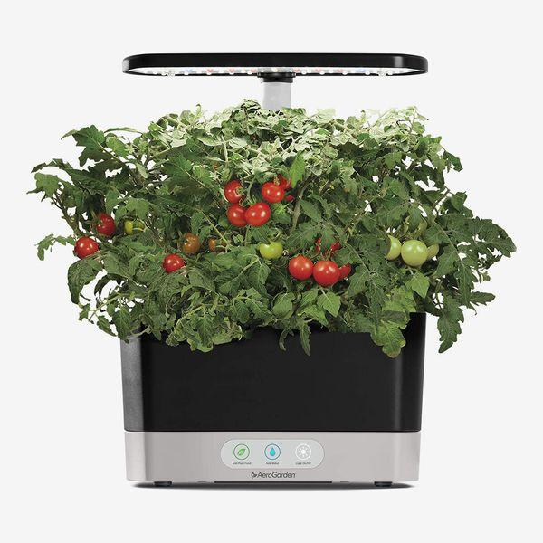 AeroGarden Harvest Indoor Garden