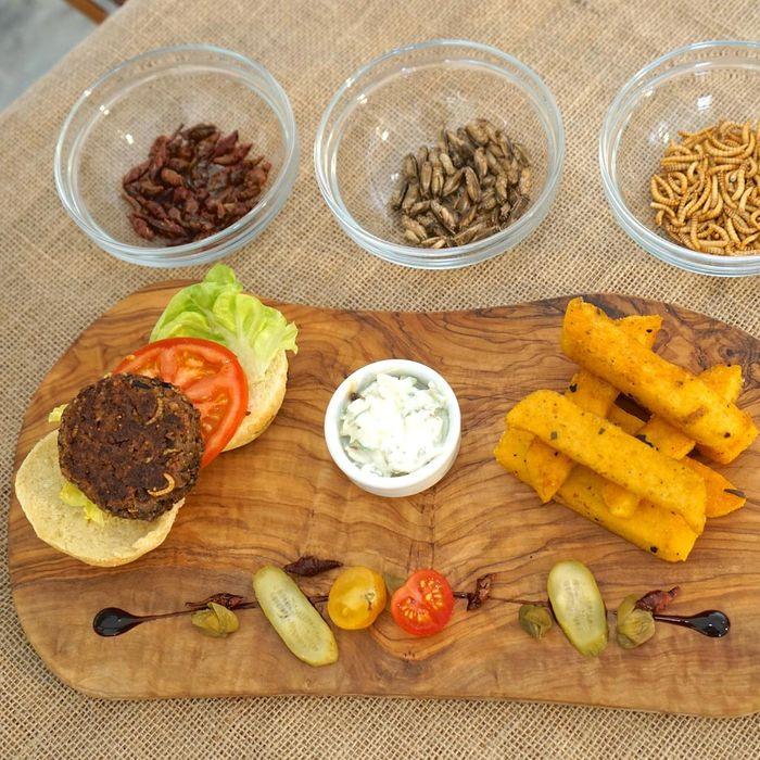 The mealworm-cricket-grasshopper burger.