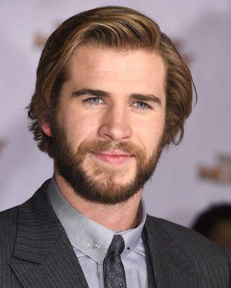 LOS ANGELES, CA - NOVEMBER 17: Liam Hemsworth arrives at the