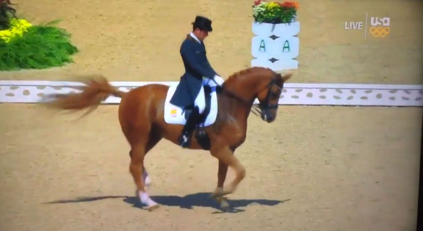 Horse dances to Santana's 'Smooth' at Rio Olympics dressage competition